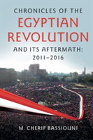 Chronicles of the Egyptian Revolution and its Aftermath: 2011-2016