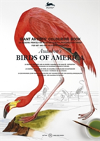 Audubon's Birds of America Giant Artists' Colouring Book