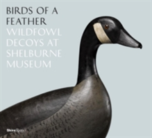 Birds of a Feather Wildfowl Decoys at Shelburne Museum